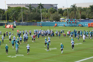 dolphins-training-camp-wide-view